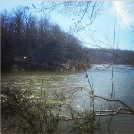 Picture of the Potomac